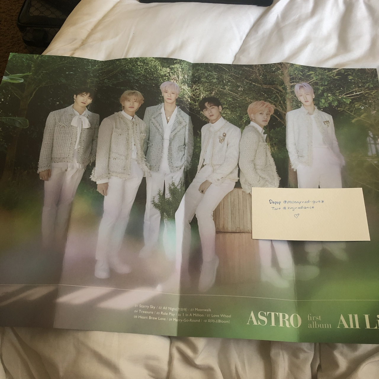 astro all light double sided poster 🌱 message before    - Depop