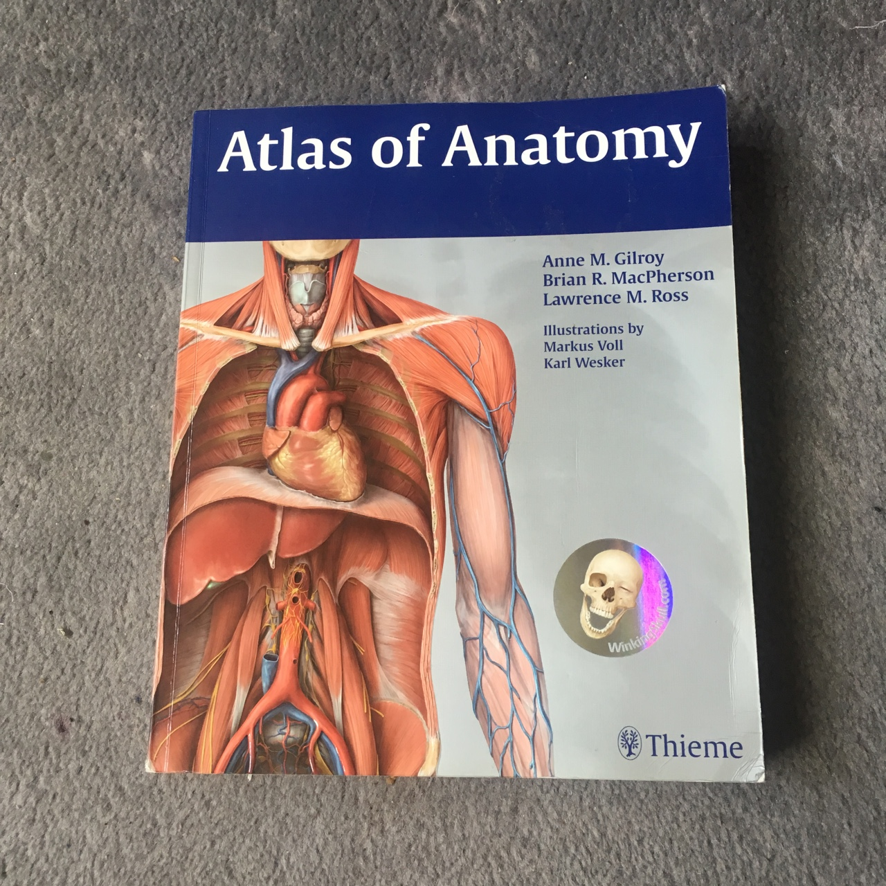 Atlas of Anatomy ❤️ 600 page long, covers the entire