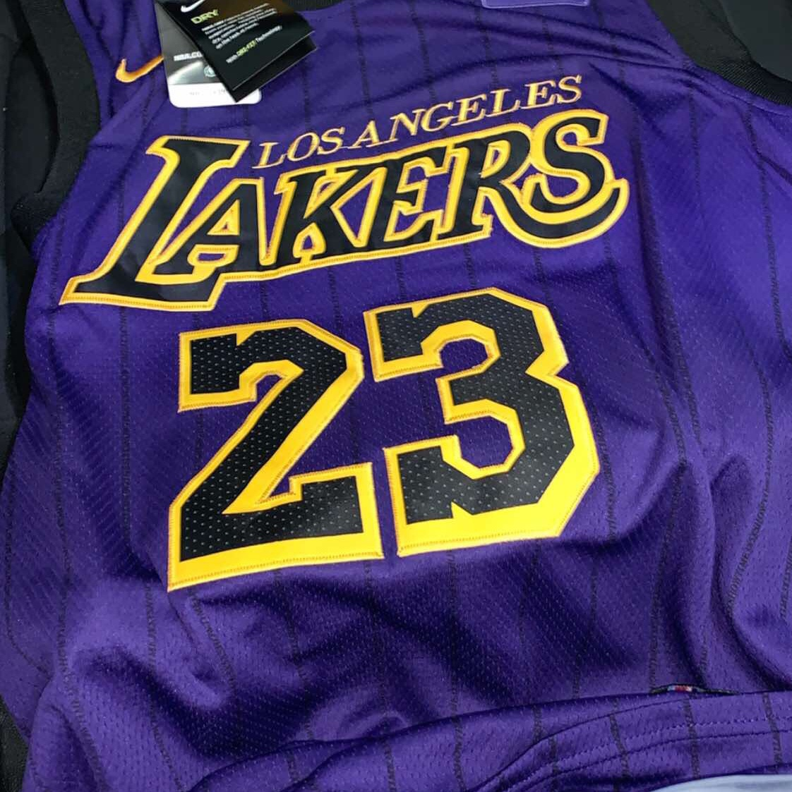 wholesale dealer 060e5 2aa61 Lebron James Los Angeles Lakers purple nba Jersey Us... - Depop