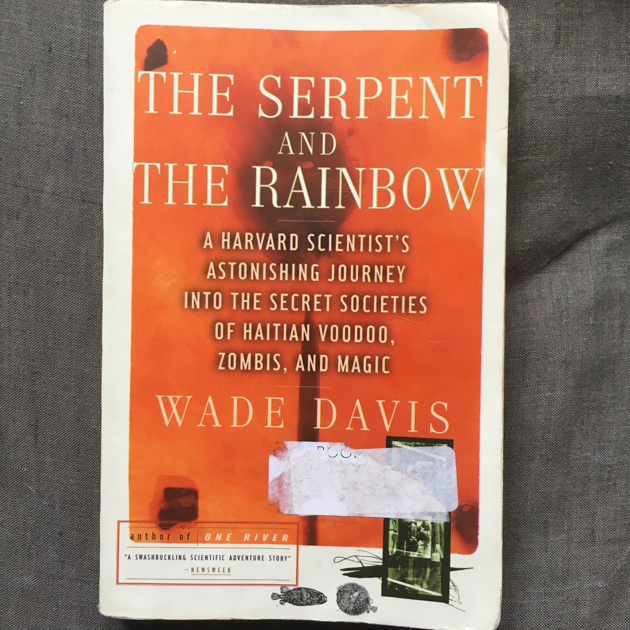 The serpent and the rainbow book on the secret    - Depop