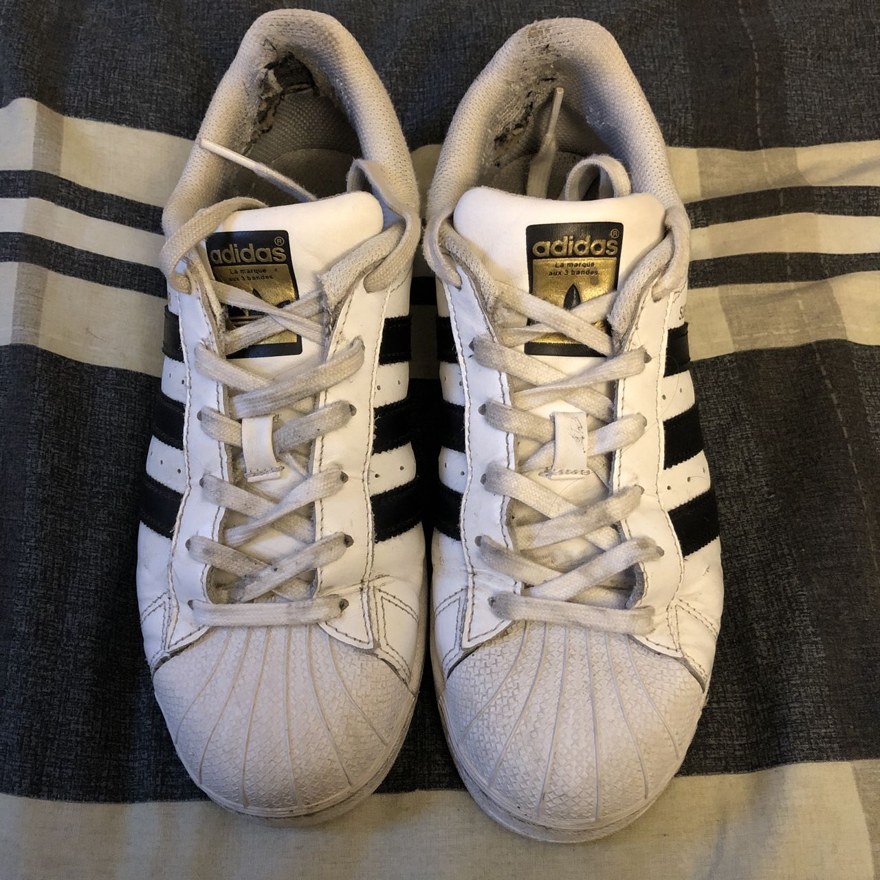 adidas superstar 6