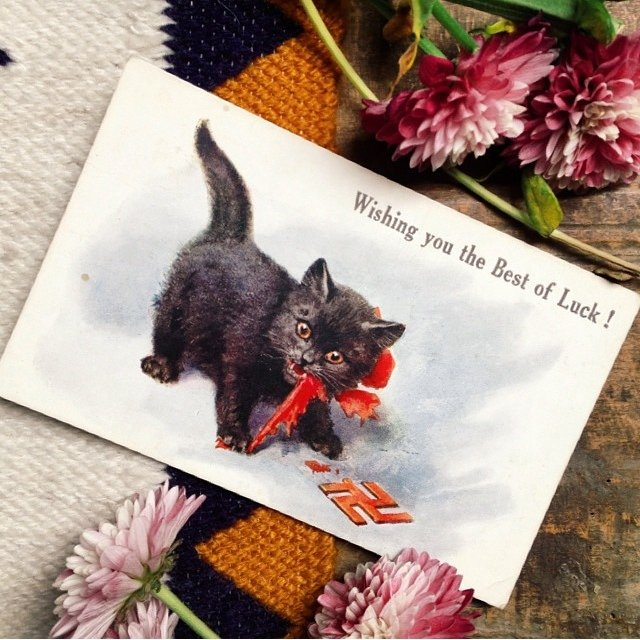 Good Luck Swastika Black Cat Post Card The Symbol Shown No Depop