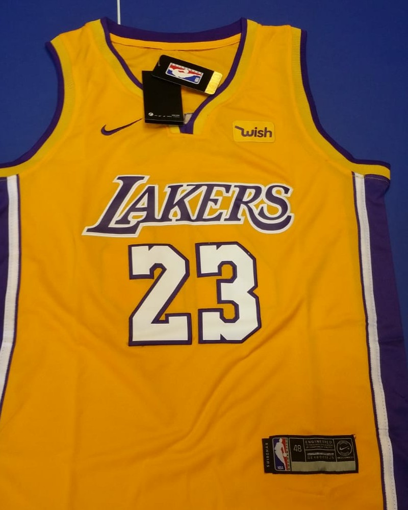 buy online afa32 01e6c LeBron James LA Lakers NBA Jersey I wish vest. Large ...