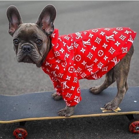 Supreme Louis Vuitton dog hoodie Fits small    - Depop