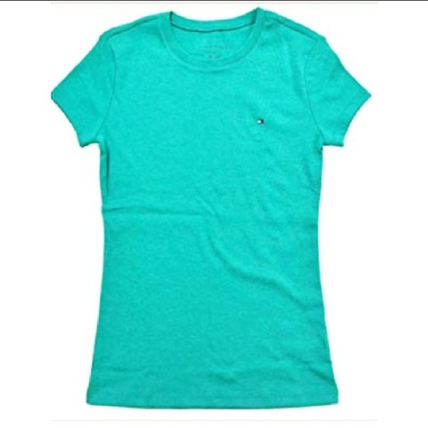 6660d092 @casperscloset. 4 months ago. Akron, Summit County, United States. Vintage  Tommy Hilfiger sea foam green t shirt.
