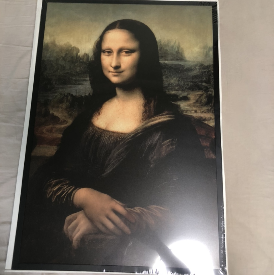 Off White X Ikea Mona Lisa Completely Deadstock Depop