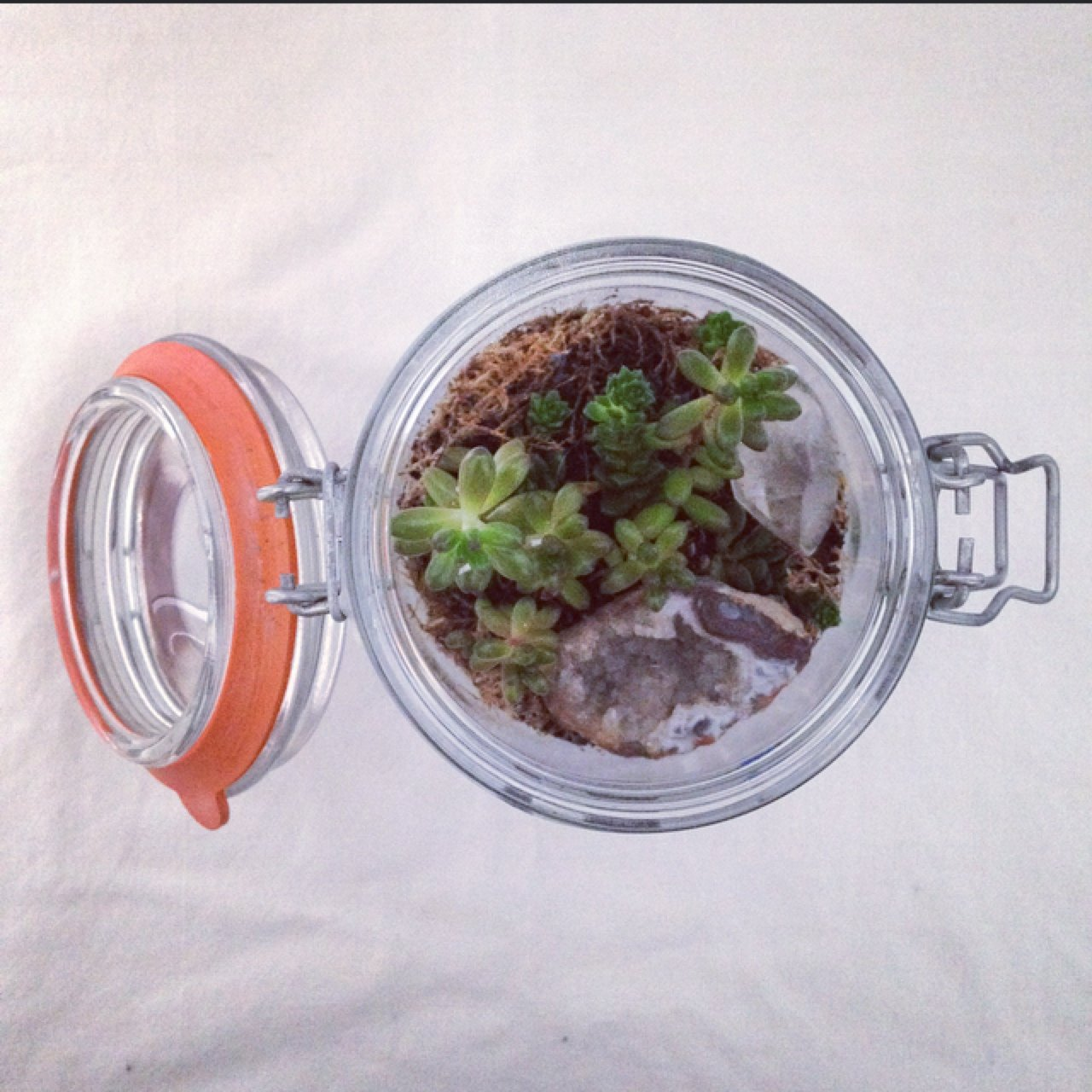 Hand Made Terrarium In Vintage Kilner Style Jar These Are A Depop