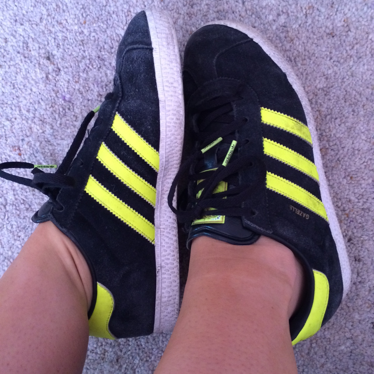 ADIDAS gazelle trainers - suede and