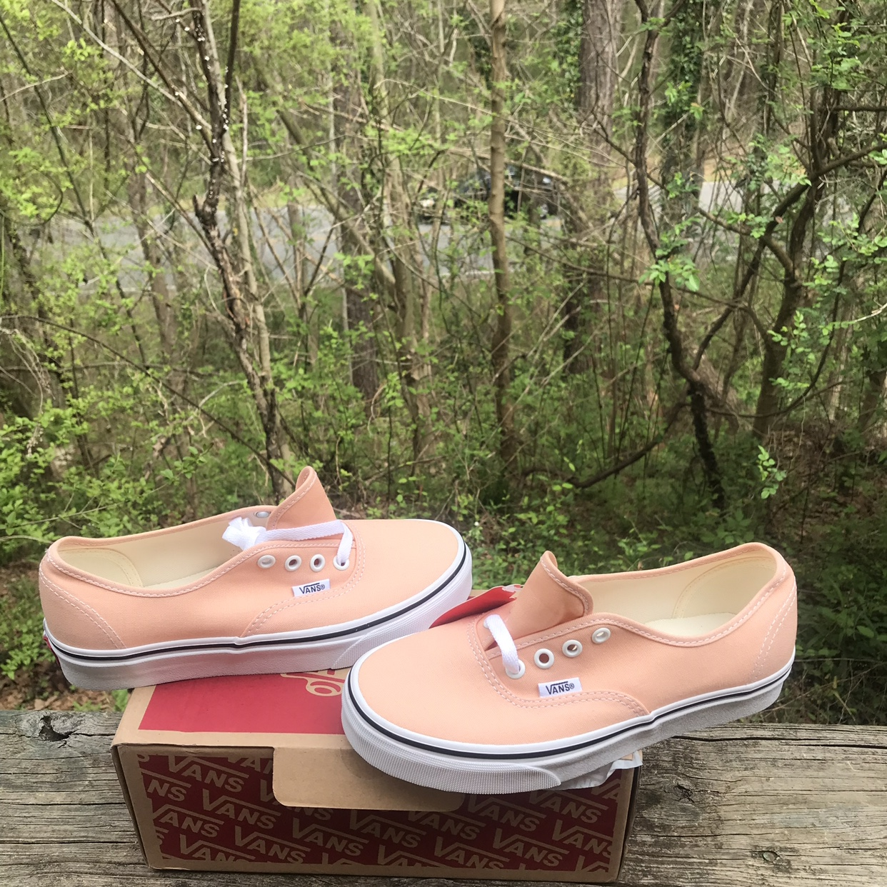 vans authentic apricot