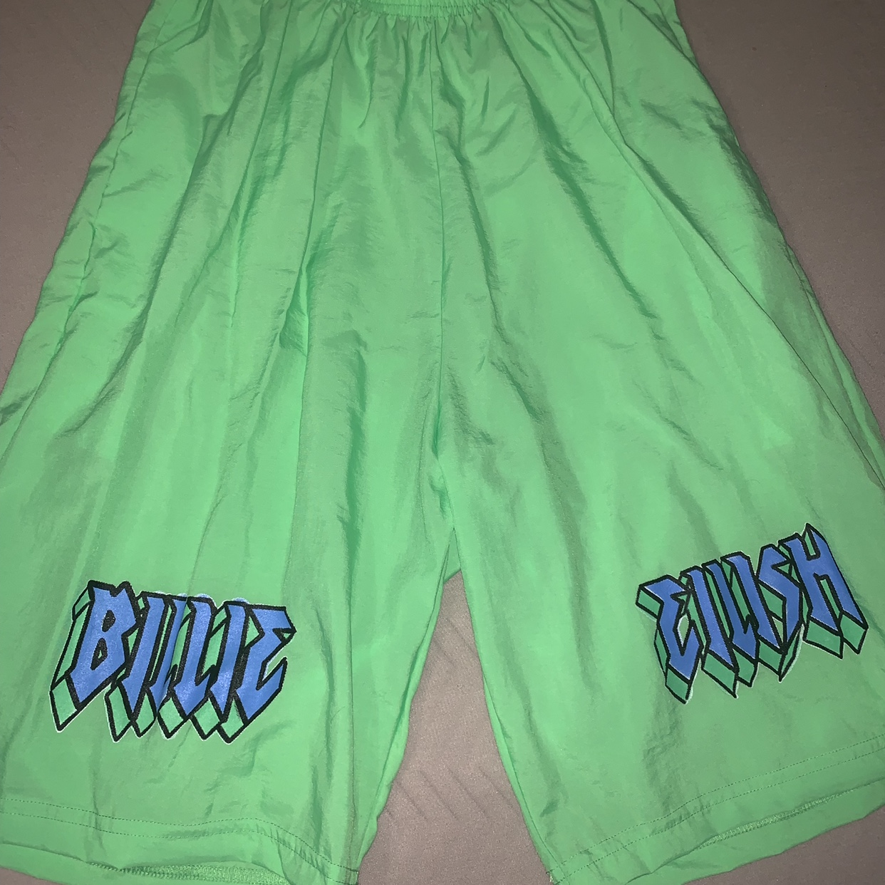 Billie Eilish Green Merch Shorts Sold On Her Depop