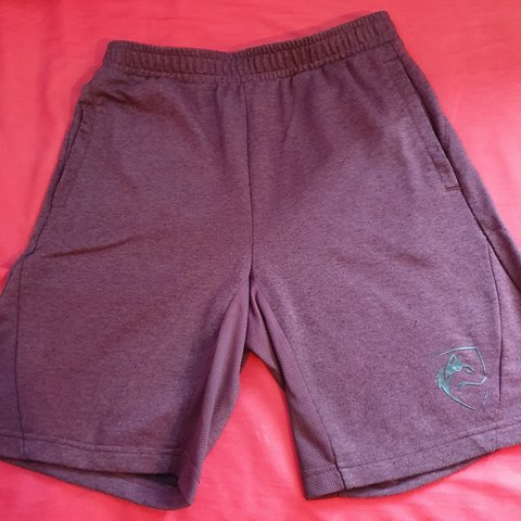 3e5930783b @alexhowarth99. 2 months ago. United Kingdom, GB. Alphalete Small Burgundy  Shorts