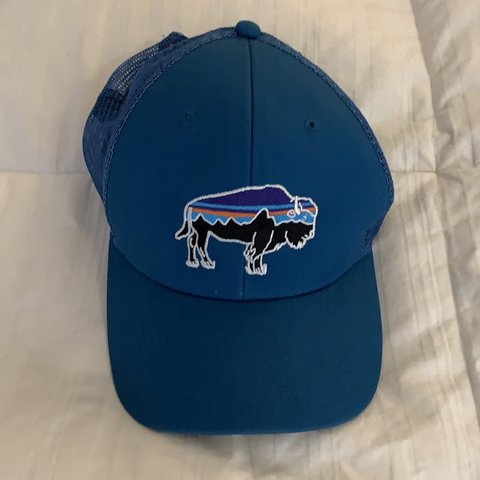 60f74258 @lesliedh1. 2 months ago. Los Angeles, United States. Brand new Patagonia  Fitz Roy Bison hat ...