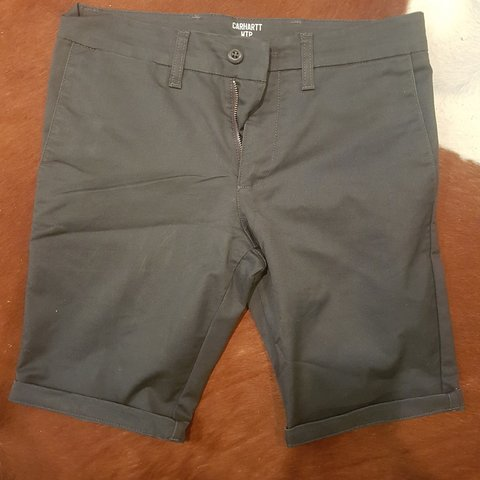 64fb439be2f Carhartt shorts in excellent condition. Size 29 waist