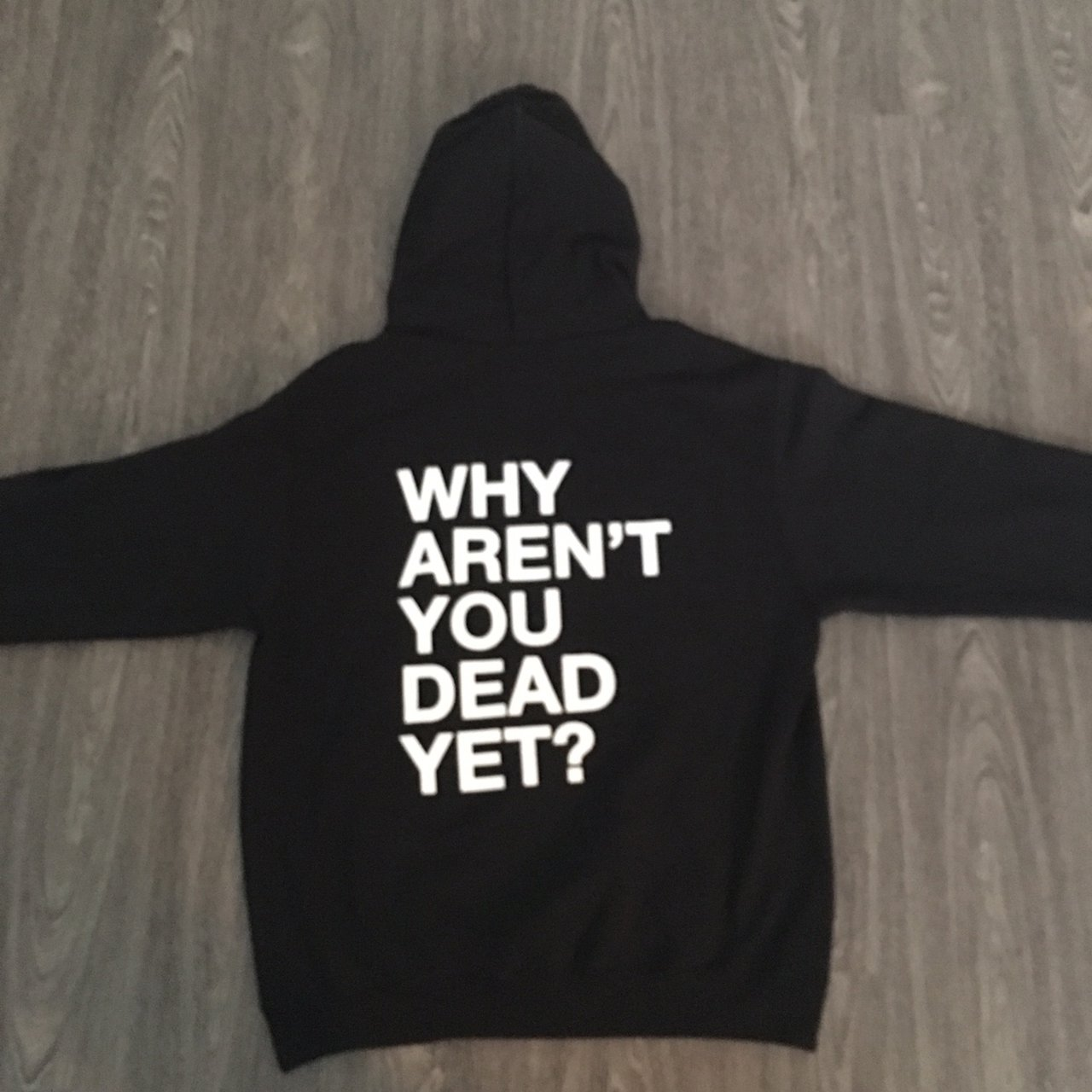WHY AREN'T YOU DEAD YET? HOODIE FREE Depop
