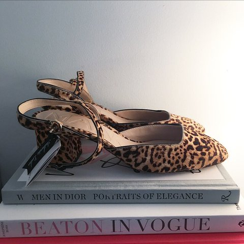 9de4b8b58efb @lastgoodbuy. last year. Cambourne, United Kingdom. Mango leopard print  shoes ...