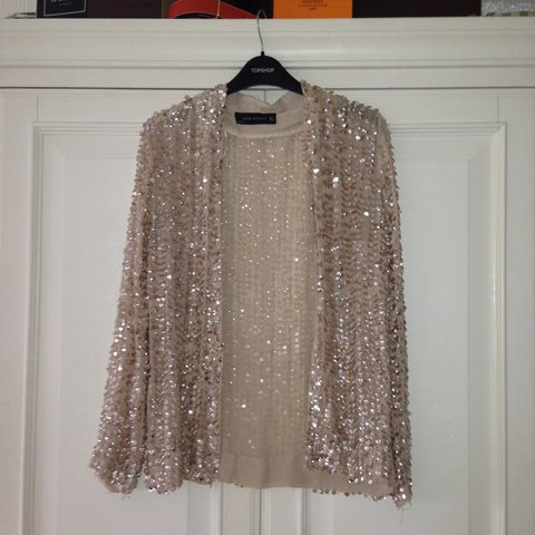 dfe394f915b Zara RARE Limited edition nude sequin jacket