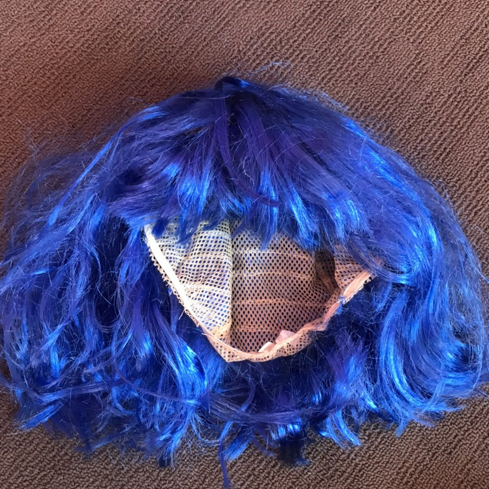 Blue Wig Purchased For Coraline Halloween Depop