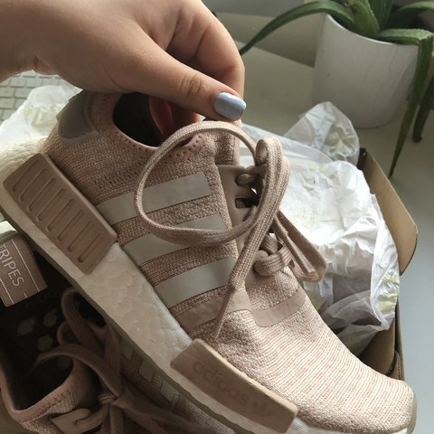 7953d9eb3 women s adidas nmd r1 in ash pearl size 5