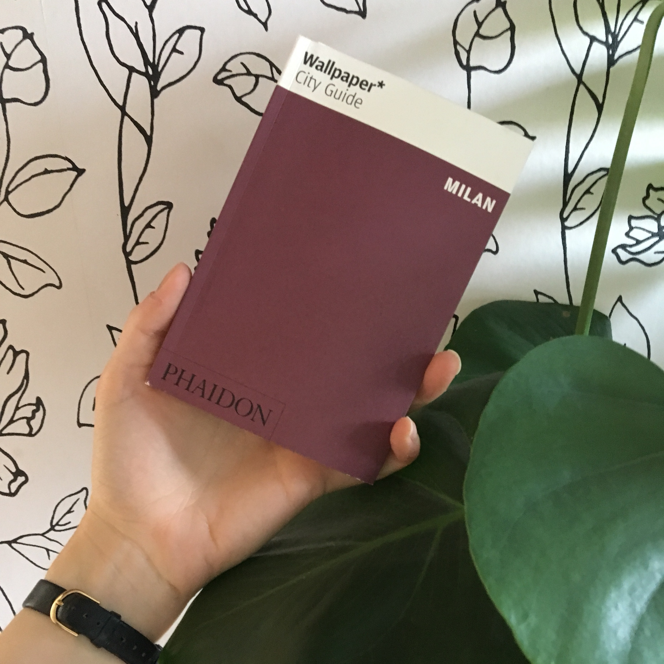 Wallpaper Milan City Guide Phaidon Never Been Used Depop