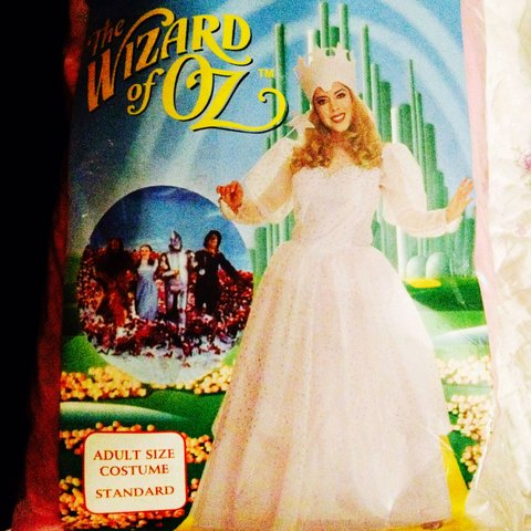 013834e9509 Glinda the good witch costume! If you love wizard of oz