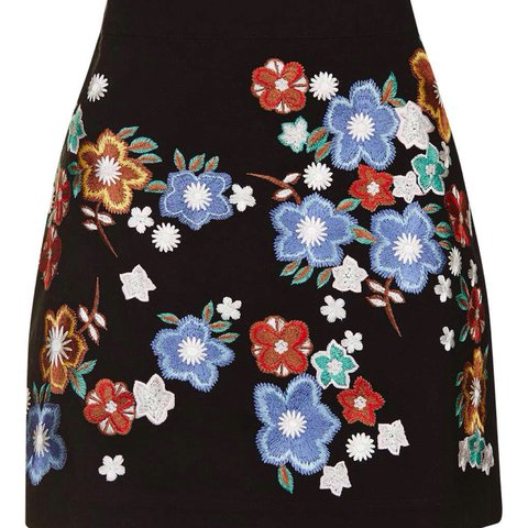 73eb7c4b6d @fashionistainthehouse. last year. United Kingdom. Topshop Floral  Embroidered A-Line Mini Skirt ...