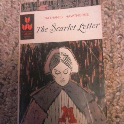 The Scarlet Letter By Nathaniel 0
