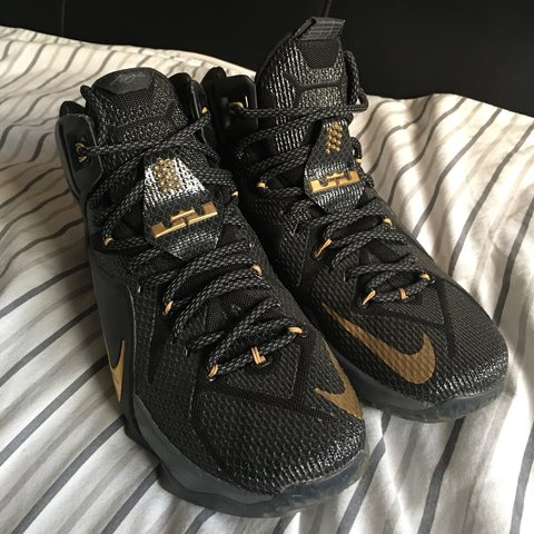 cbf5544a95dac Men s Nike LeBron basketball trainers