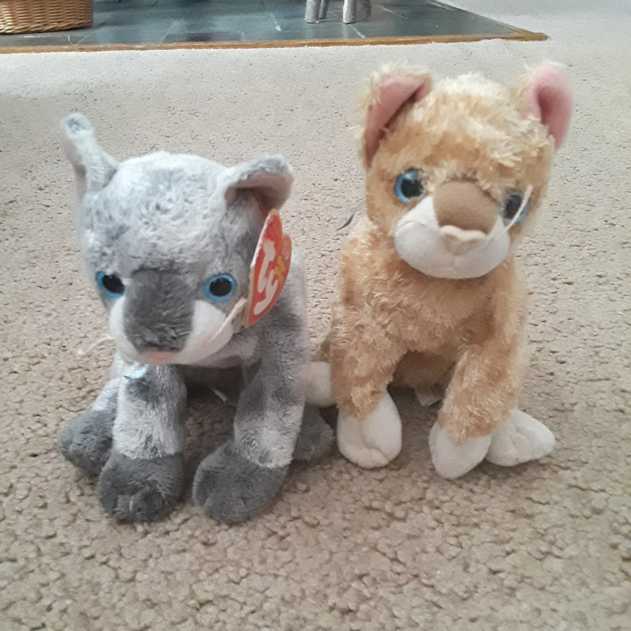 14c758c936f A set of two cat beanie babies. Frisco and Mattie. Mattie a - Depop