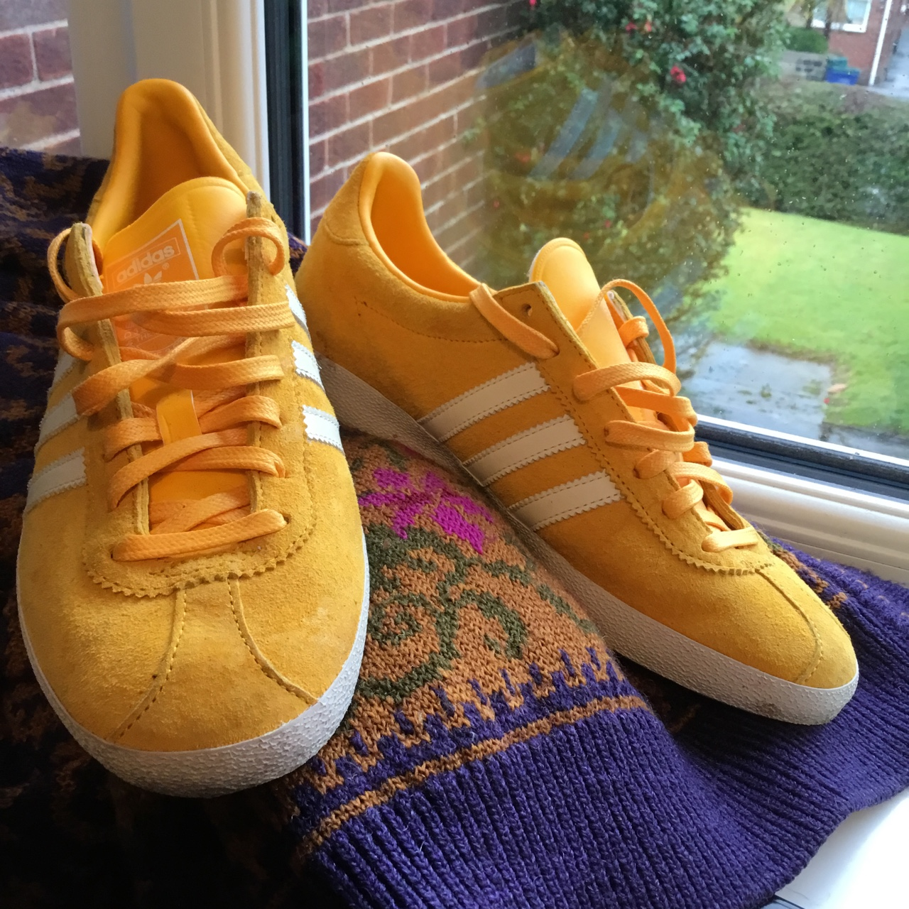 Anybody know where i can buy a pair of yellow adidas gazelle