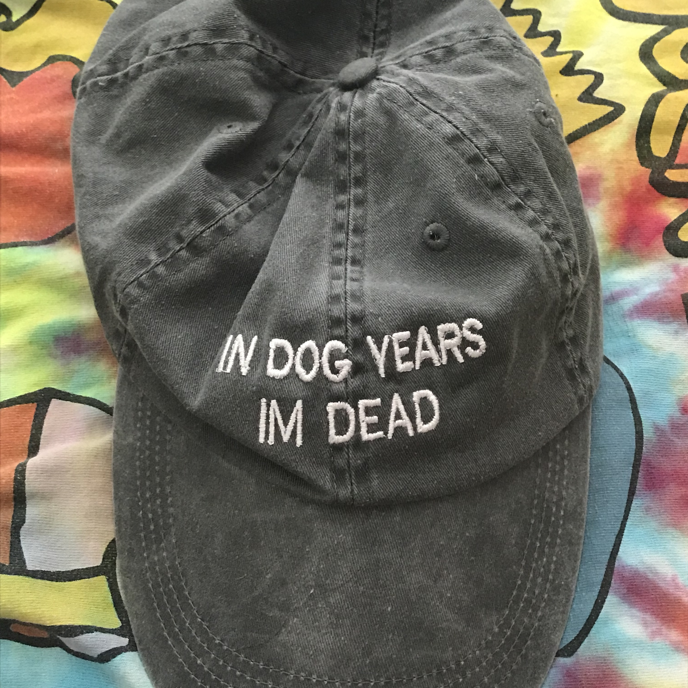 in dog years i m dead