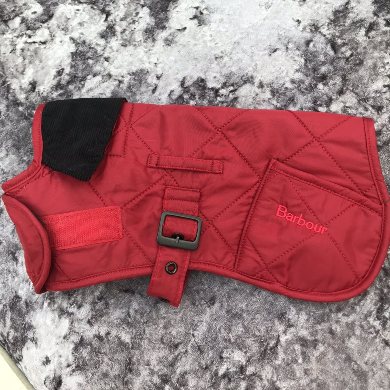 red barbour dog coat