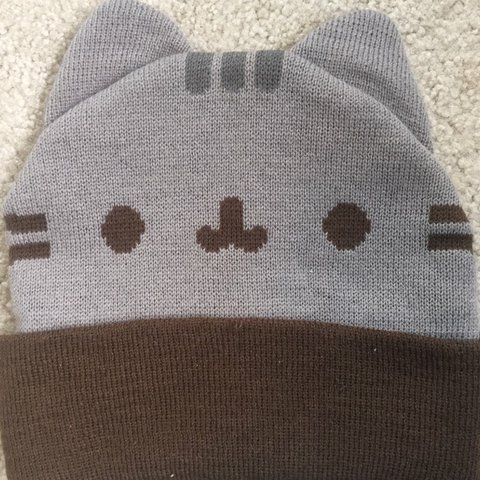 65a2e48a55844 PRICE DROP Pusheen beanie from hot topic. One little pulled - Depop