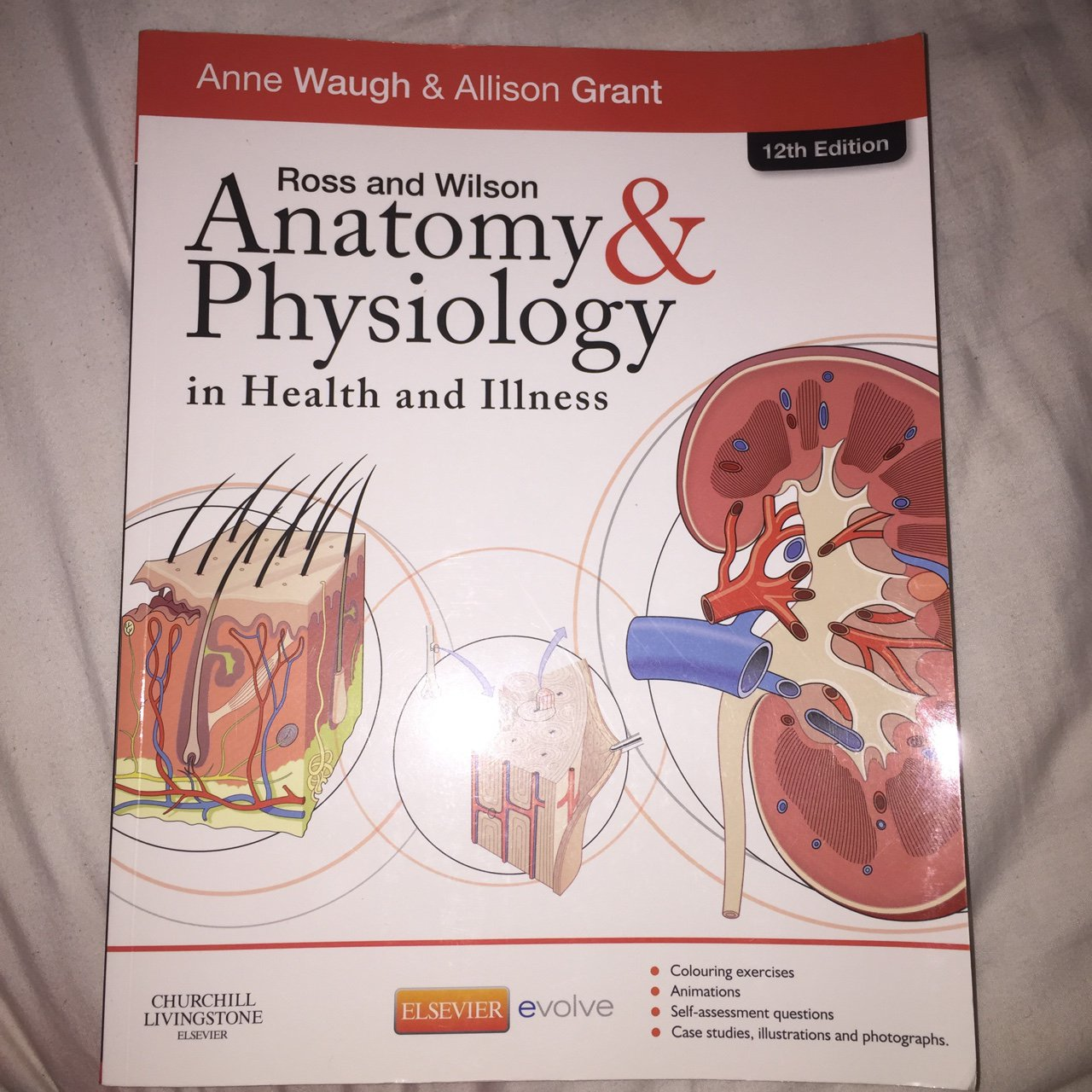 Anatomy & Physiology in health and illness. Ross and Wilson. - Depop
