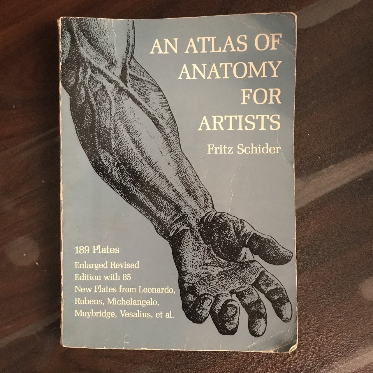 Anatomy Artist Book And A4 Card Paper The Book I Bought So Depop