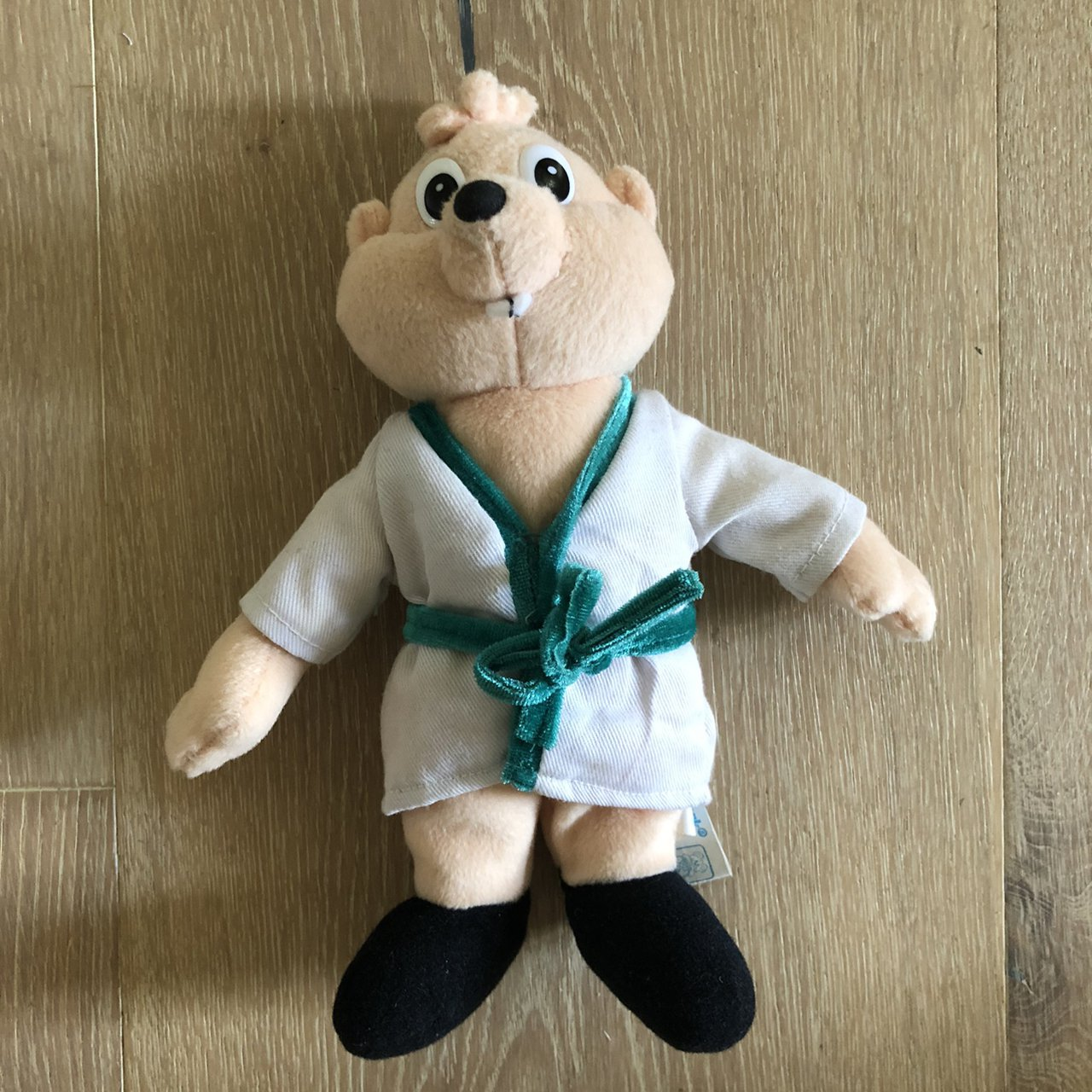 Vintage Alvin And The Chipmunks Karate Theodore Depop