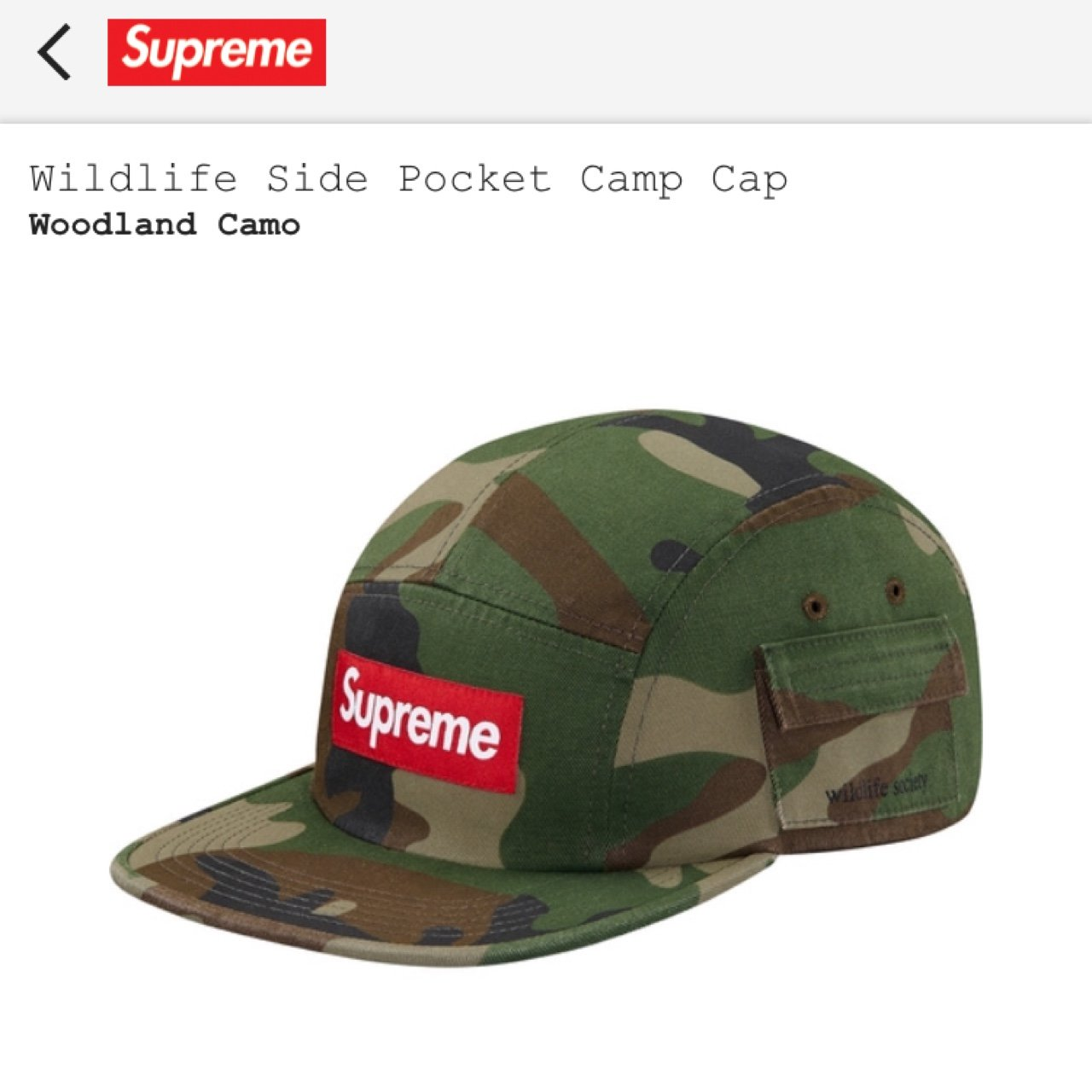 1fca2f50 Supreme wildlife society camo camp hat. Obo. - Depop