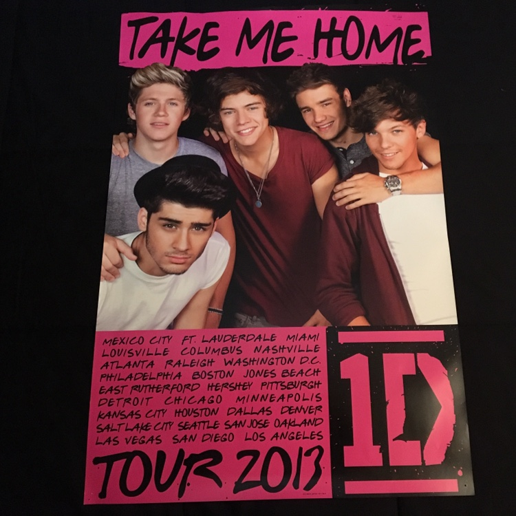 One Direction Official Take Me Home 2013 Concert Depop
