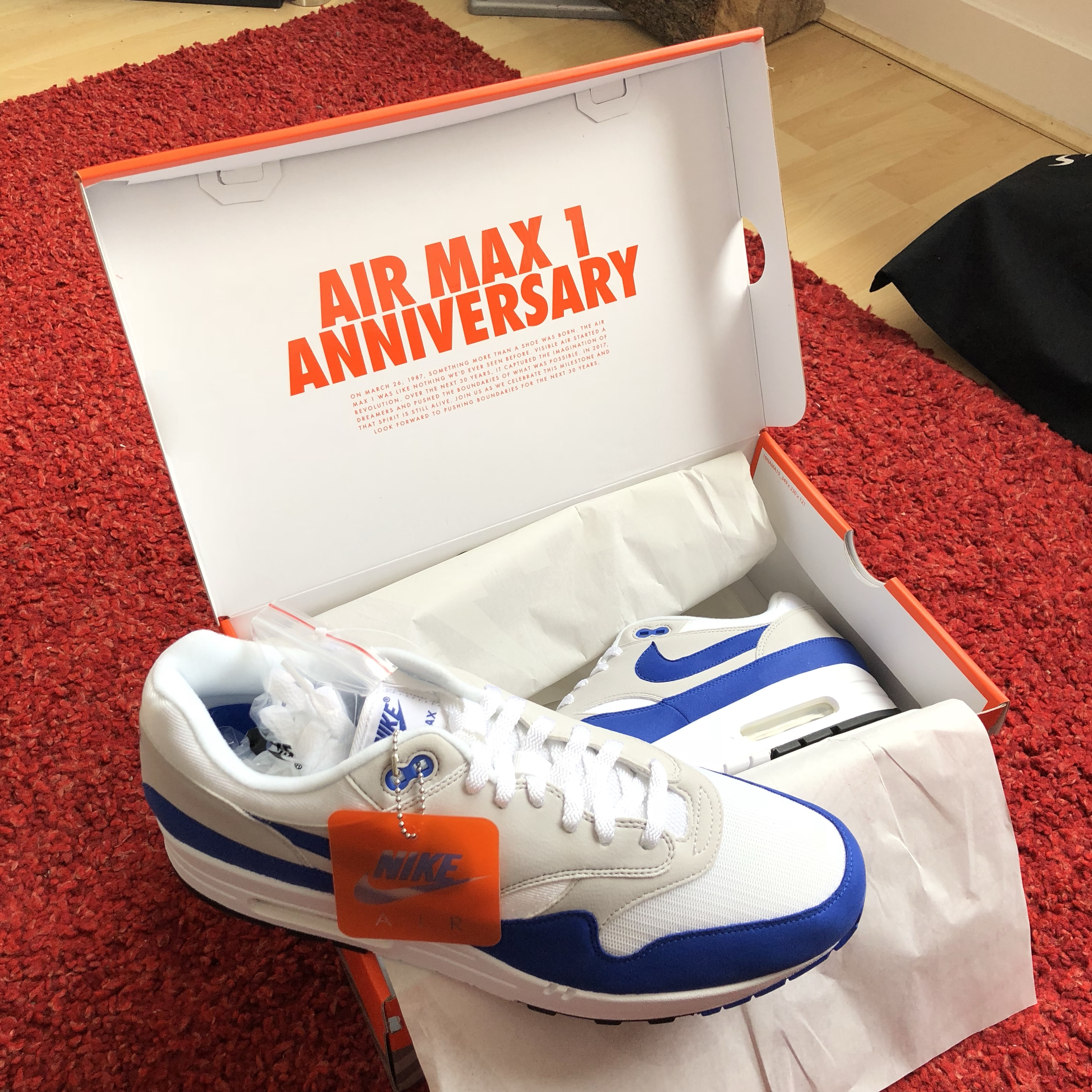 Nike Air Max 1 Anniversary OG Blue Deadstock Can't Depop