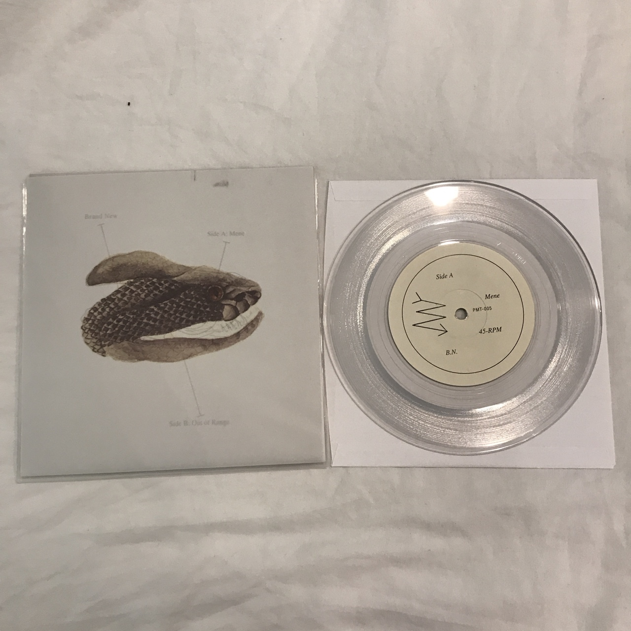 Brand New - Mene clear 7 inch vinyl single  Great    - Depop