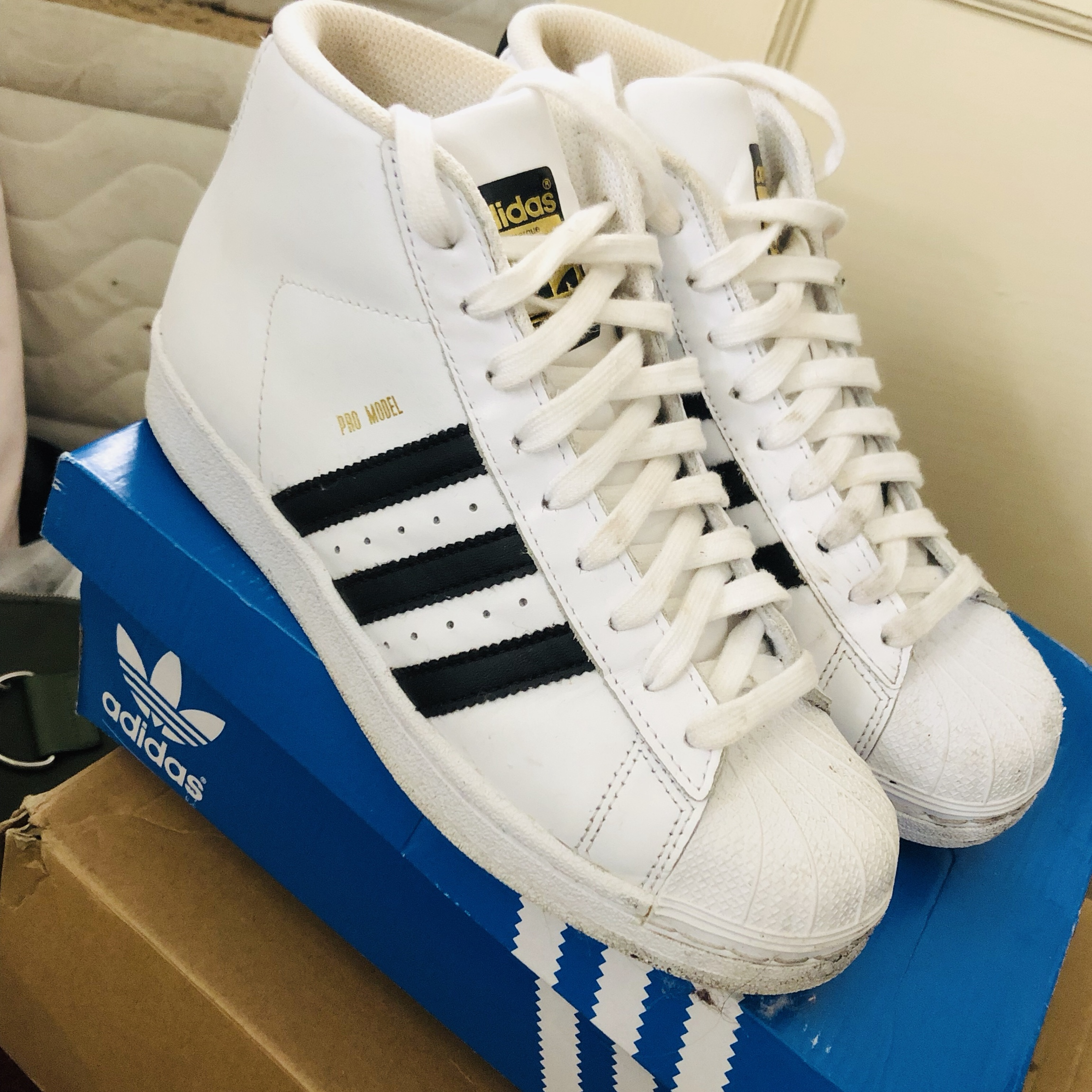 high top adidas shell toes