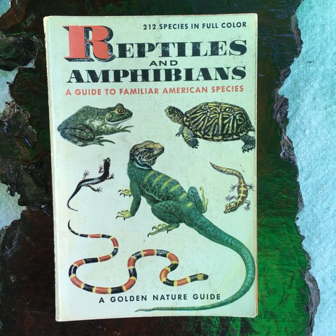 Reptiles And Amphibians: A Guide to Familiar American Species (A Golden Nature Guide)