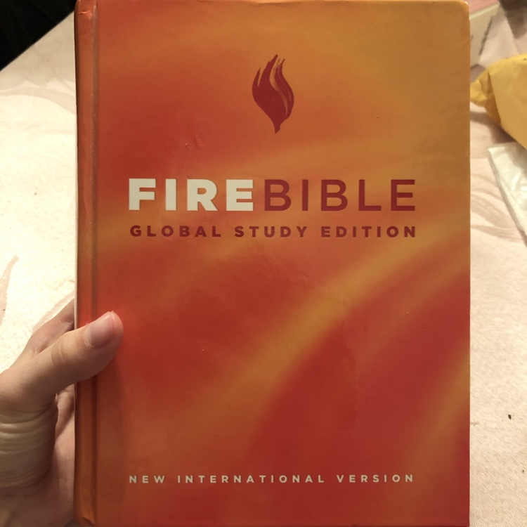 NIV Global Study Edition Orange Fire Bible No    - Depop