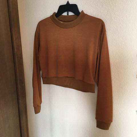 6c4bb0dcee5fd0 @lizorn. 6 months ago. Highlands Ranch, United States. Burnt orange long  sleeve crop Top.