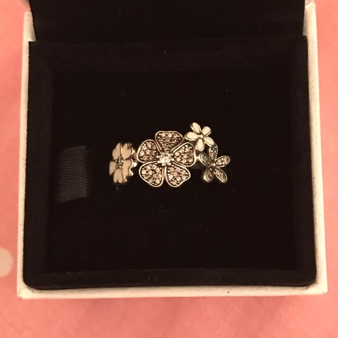 a705056e5 @bext13. 2 years ago. Silver End, United Kingdom. Pandora ring Size 54  flower ...