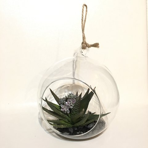 Large Round Terrarium Faux Succulents In Faux Water And For Depop