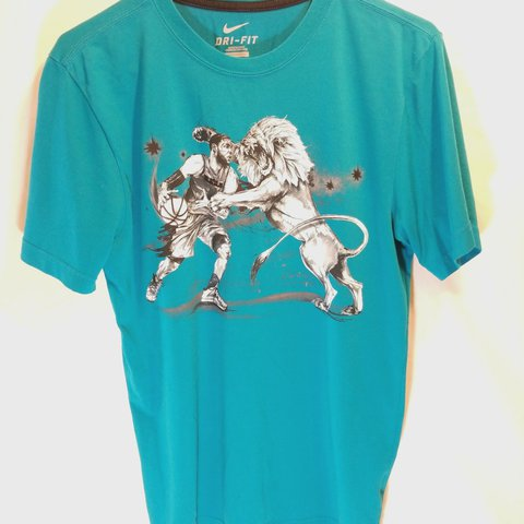 032fb05c3a2 Nike Lebron James Lion within Hero Men s Small T-shirt. Nike - Depop