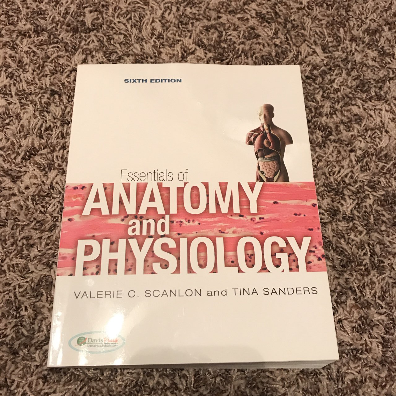 Fast And Free Shipping A Good Study Book For Anatomy And To Depop