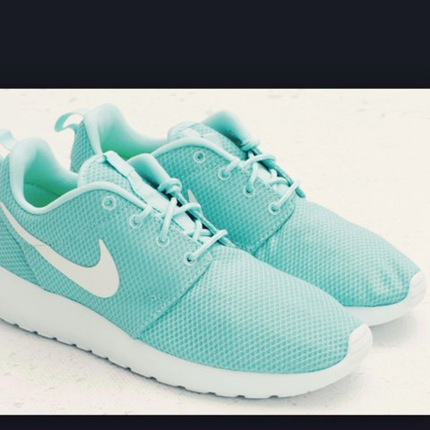 3694427c7ede Never worn nike rosche runners mint colour