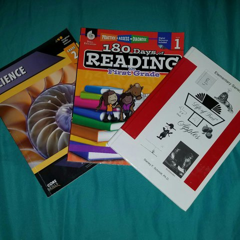Set Of 3 Workbooks At First And Second Grade Level Great For Depop