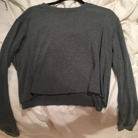 41bf157ef47f1 brandy melville cropped sweater new no hollister